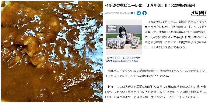 川北いちじくカレー:実物&ウェブサイト